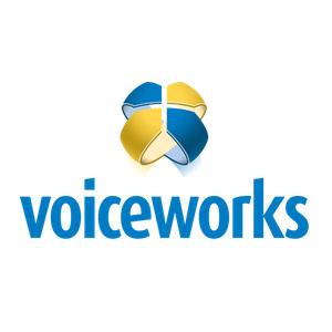 voiceworks nederlandse holacracy organisatie