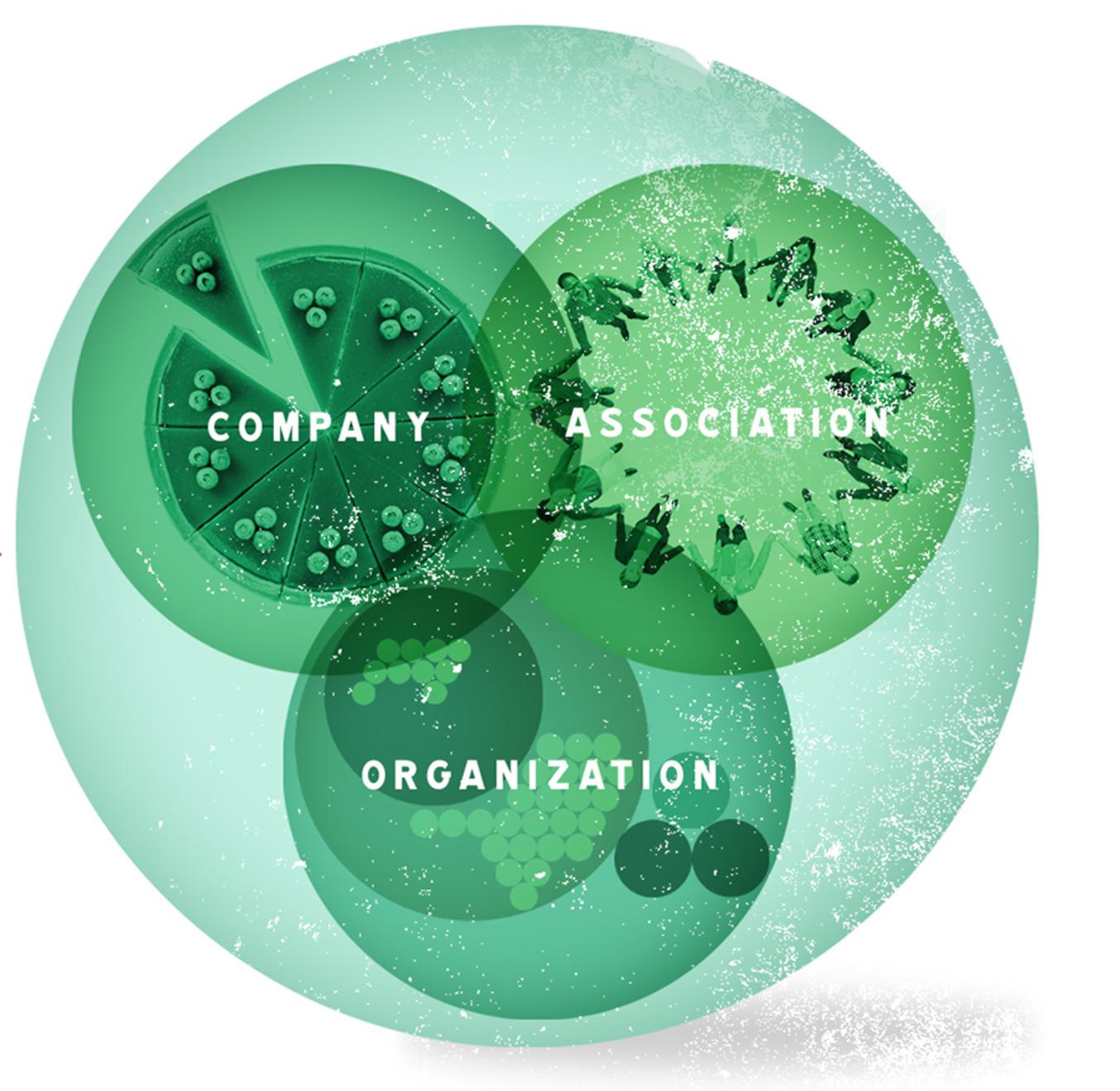 zelf organiserend systeem verandering organisatievorm