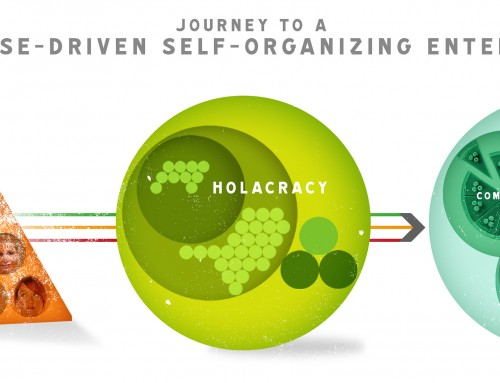 Pioneers! The journey to a Self-Organizing Enterprise