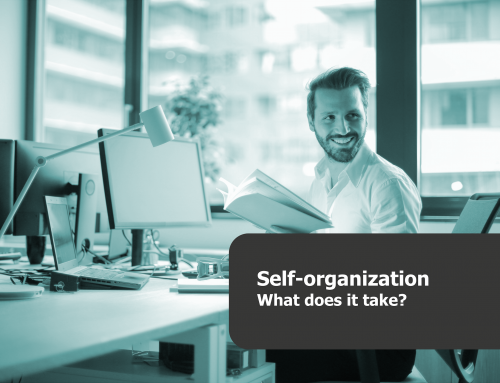 What is self-organization  and what does it take  (to get started)?