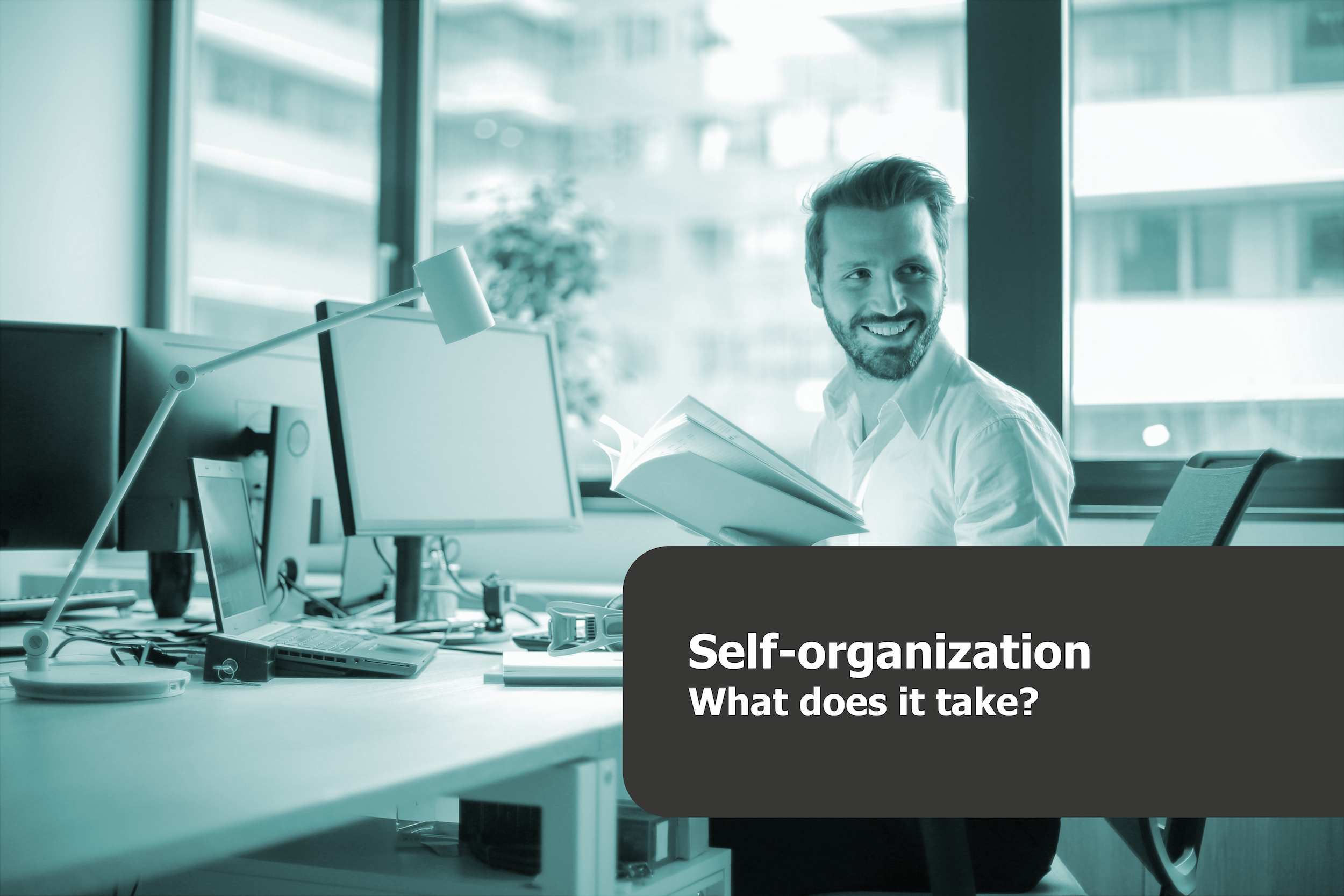 what is self-organization