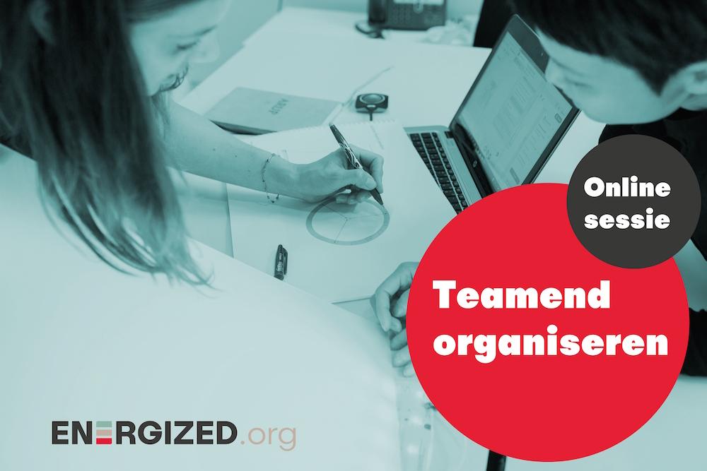 teamend organiseren webinar