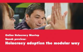 modulaire holacracy adoptie implementatie